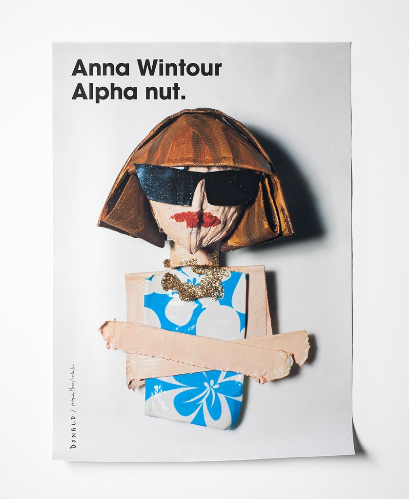 Anna Wintour, Fashion is Nuts, Donald Robertson
